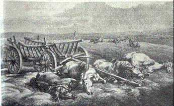 Some of over 10,000 horses lost during the French advance.( Faber du Four, Lieutenant in the Grand Armée during the 1812 campaign. Du Four was a German officer and military painter). Musée de l'Armée- Paris.
