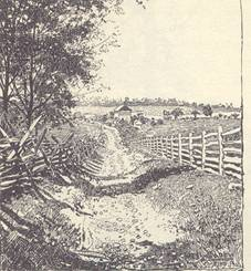 View from the second bend in the lane. West Wood in the distance. The house was built after the battle.