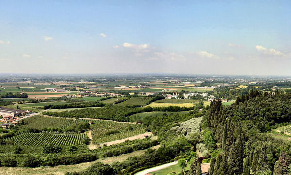 Looking South/West. Mont des Cyprées in the foreground on the right.