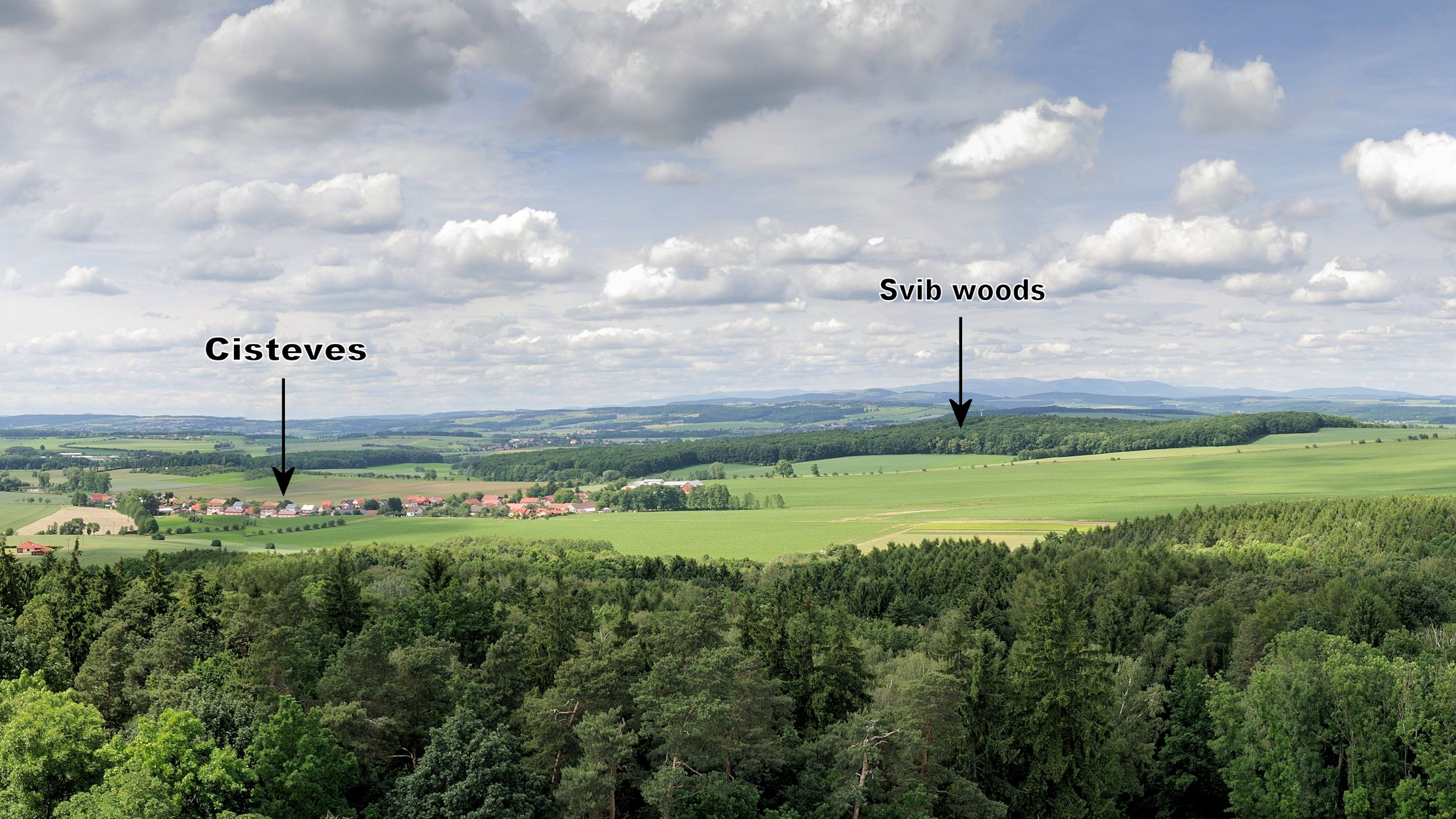 View from observation tower looking North towards Cisteves and Swipwald.
