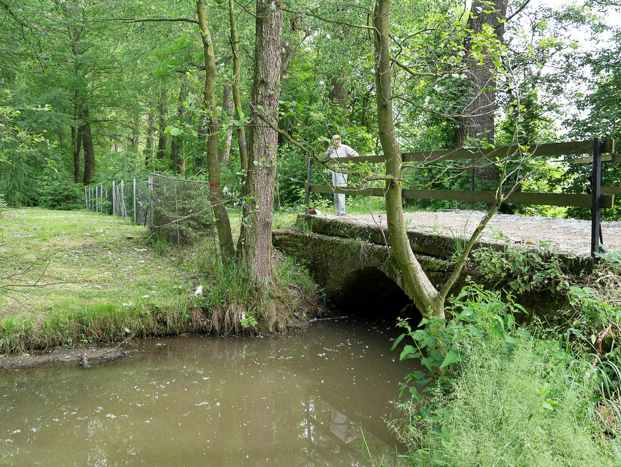 A bridge over the Bistritz river at Dohalice.  Old stones are visible under the modern concrete decking.
