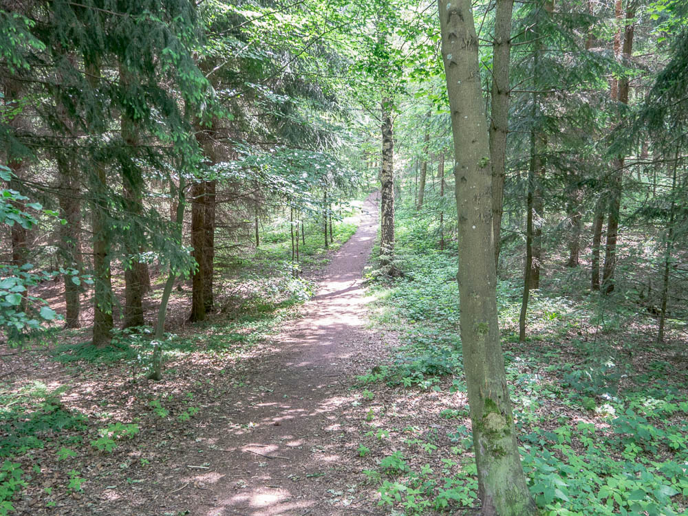 One of the battlefield trails.